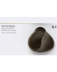 6,1 - Dark Ash Blonde-swatch