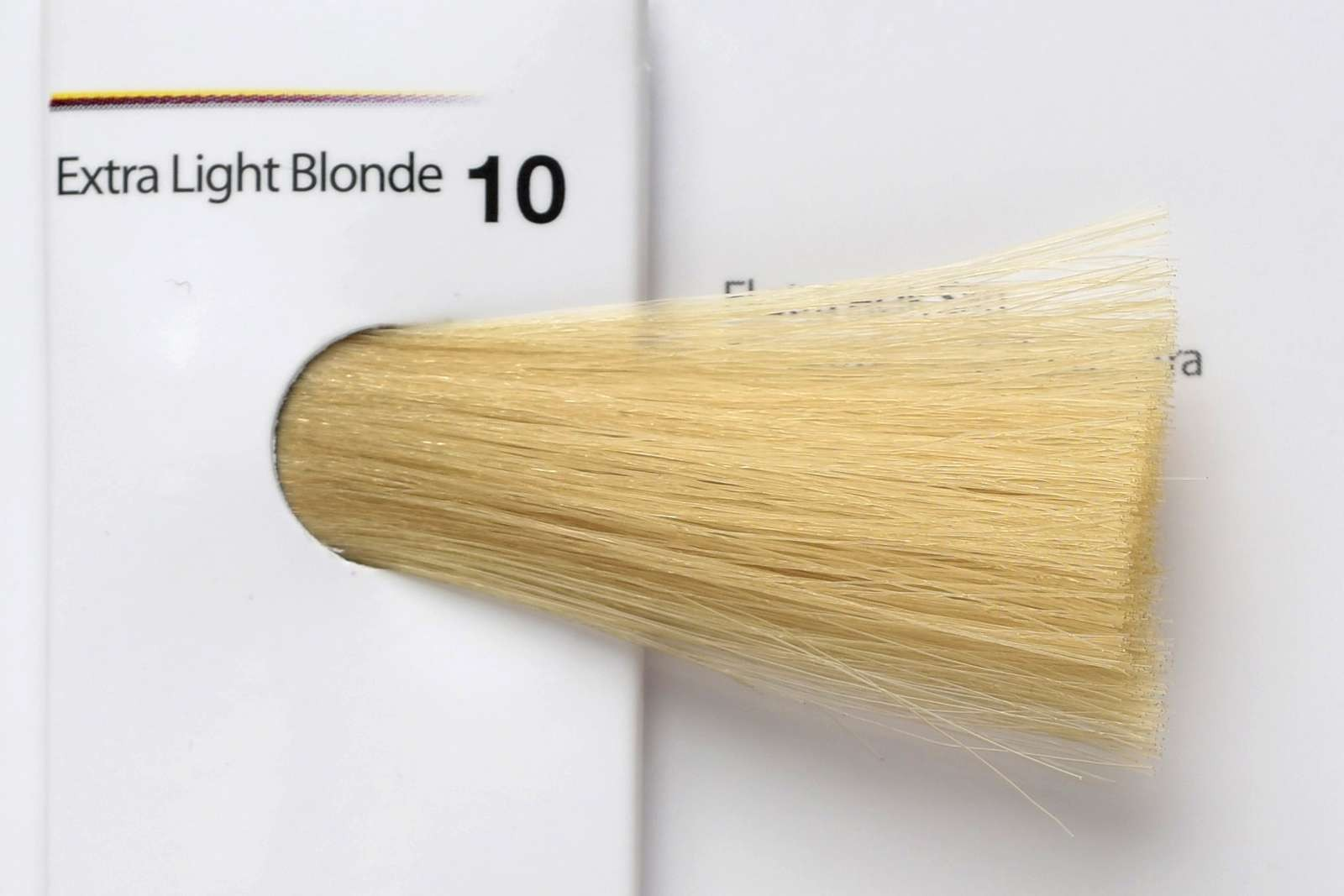 10 - Extra Light Blonde-swatch