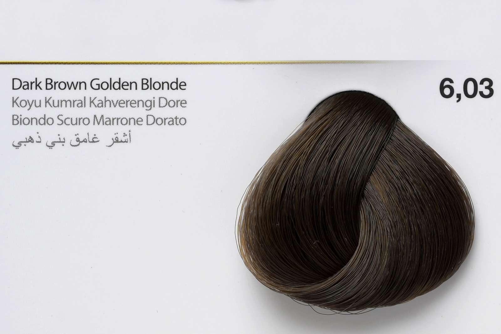 6,03 - Dark Brown Golden Blonde