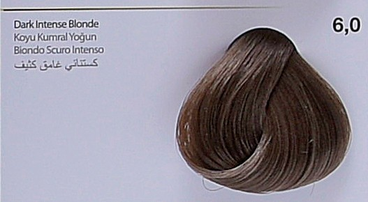 6,0 - Dark Intense Blonde-swatch