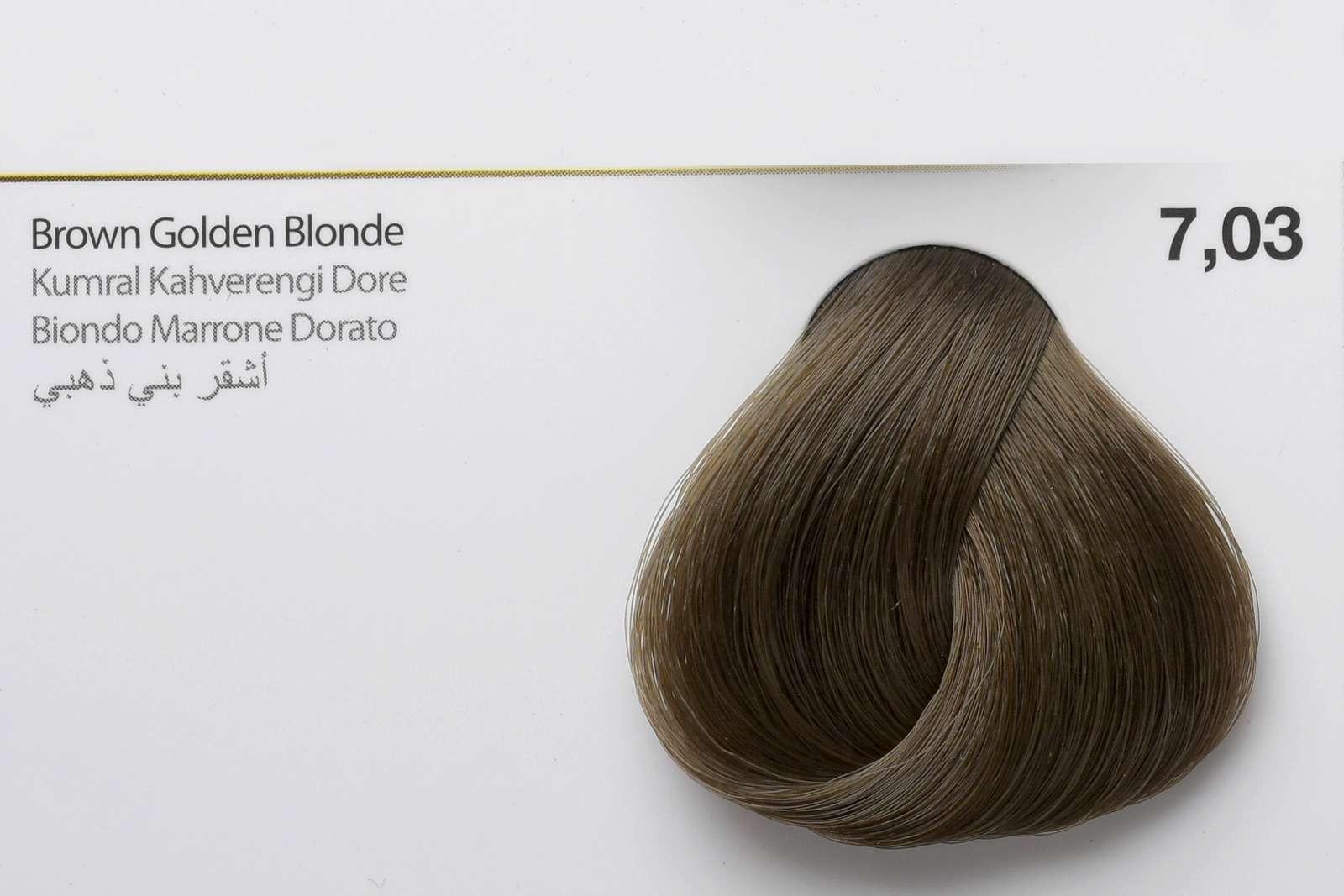 7,03 - Brown Golden Blonde-swatch